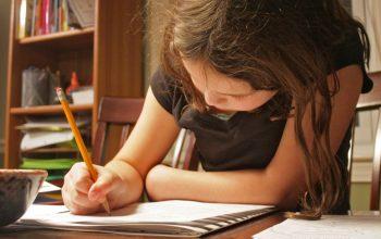PDF: Homeschooling Preschool and Early Elementary Grades